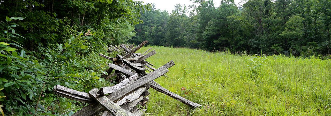 Pickett's Mill Battlefield