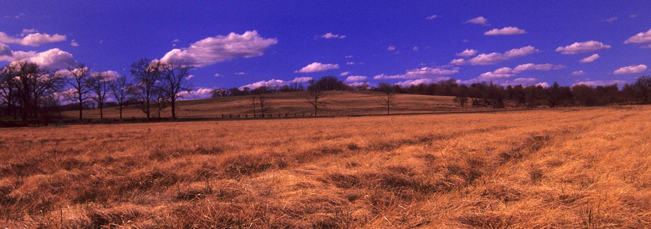 Second Kernstown Battlefield