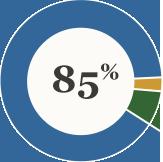 85% pie graph