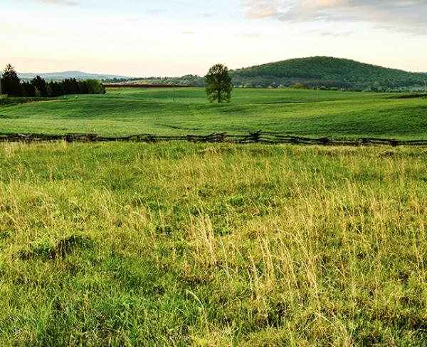 Save Key Land at Four Virginia Battlefields
