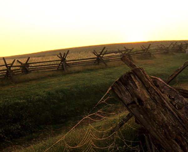 This is an image of the Antietam battlefield at sunset.