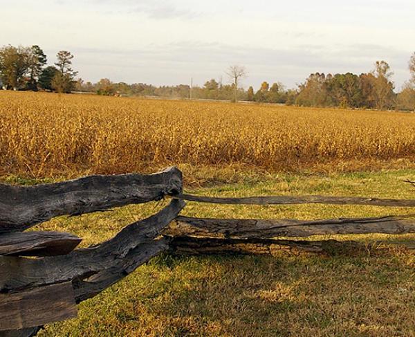 Bentonville Battlefield Hero