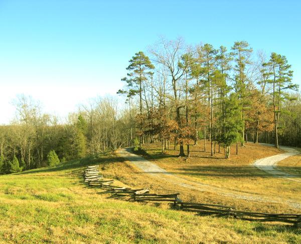 Blackstock's Farm