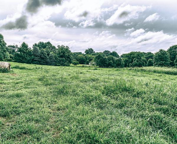 Land Saved by the Civil War Trust at Brandywine
