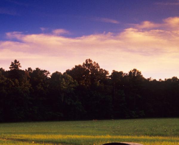 Chickamauga Horshoe Ridge