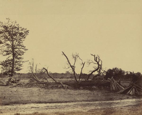Cold Harbor Confederate Works