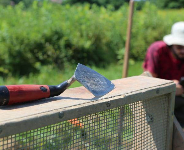 Trowel at Saratoga Battlefield with archaeologist