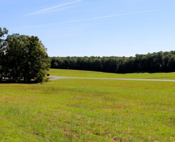 Saunders Field at Wilderness