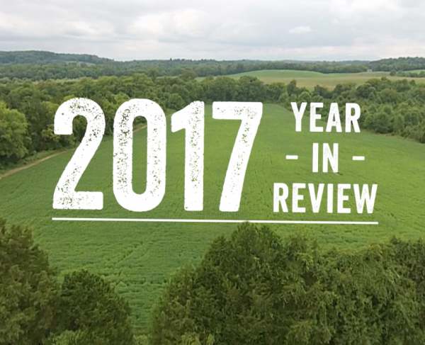 2017: Year in Review square