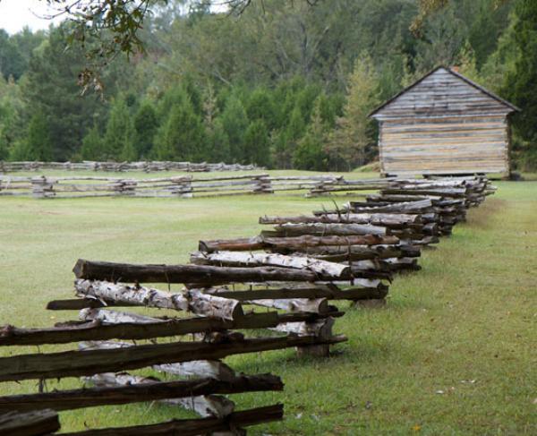 Split Rail Fences at Shiloh Battlefield