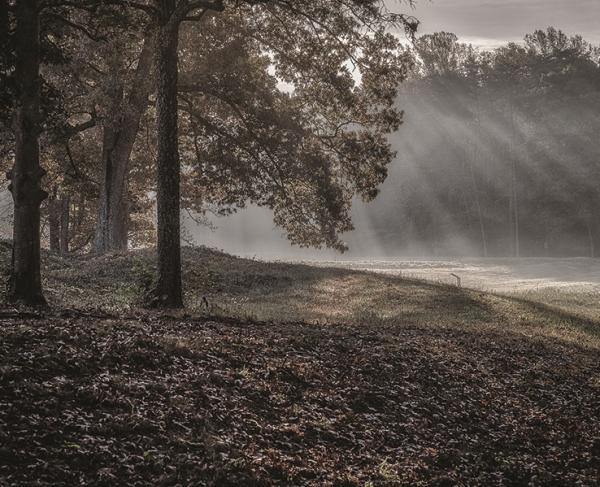 Spotsylvania Light Shafts