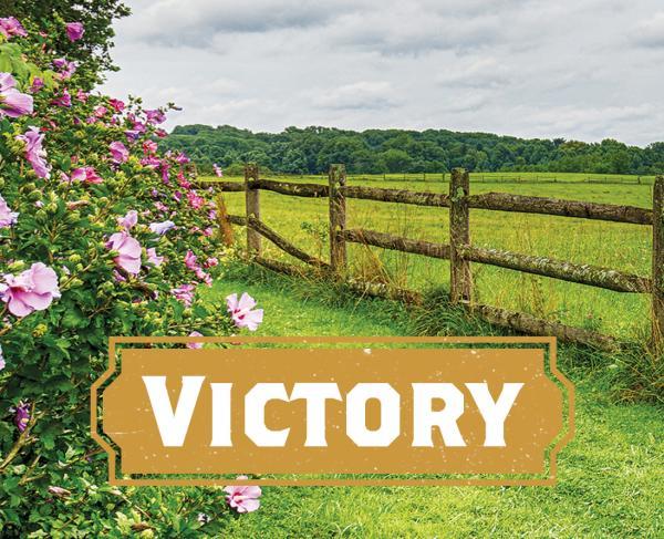 Victory at Brandywine