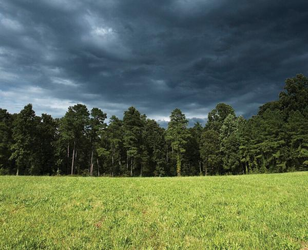 Cloudy skies over Cold Harbor Battlefield