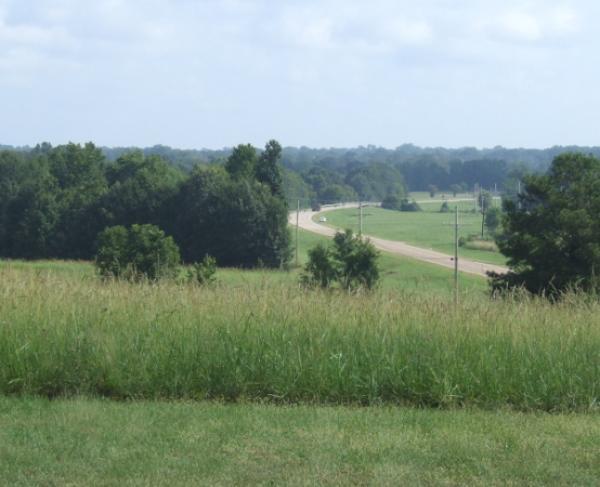 McPherson Ridge Landscape