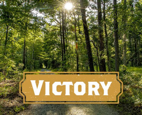 Victory at New Market Heights
