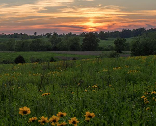 Kentuckians: Support Battlefield Preservation Legislation