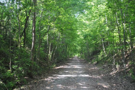 Sulfur Creek Trestle Battlefield