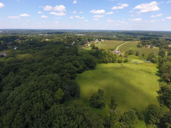 Brinton Run Preserve Aerial.jpg