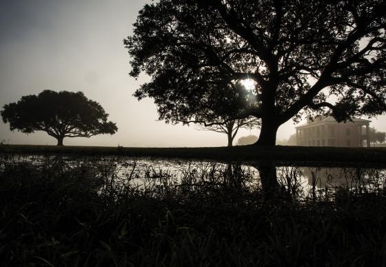 Chalmette Battlefield Reflection