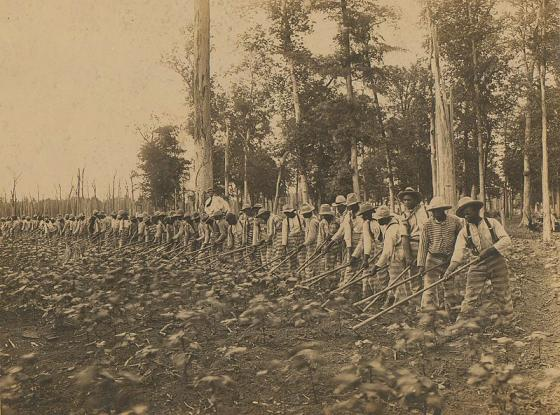 Convict Labor - Reconstruction Amend. - Public Domain.jpeg