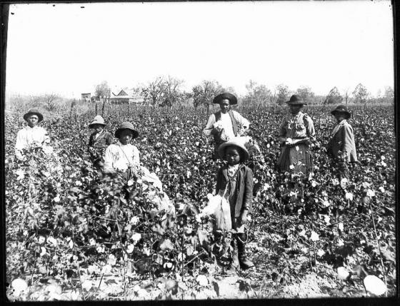 Sharecroppers - Sharecroppers - Public Domain.jpg