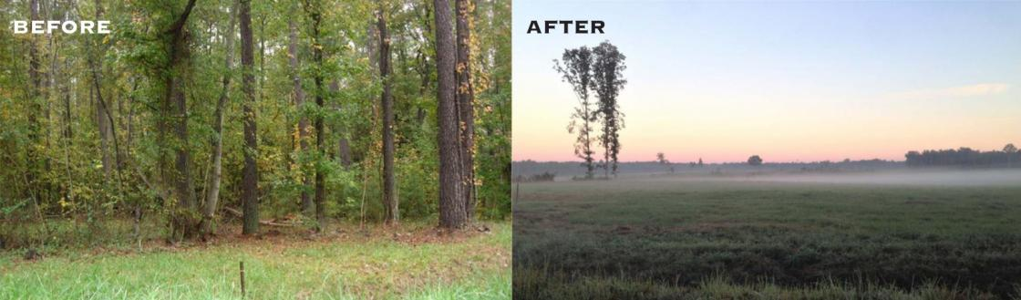 The Breakthrough at Petersburg: Before and After