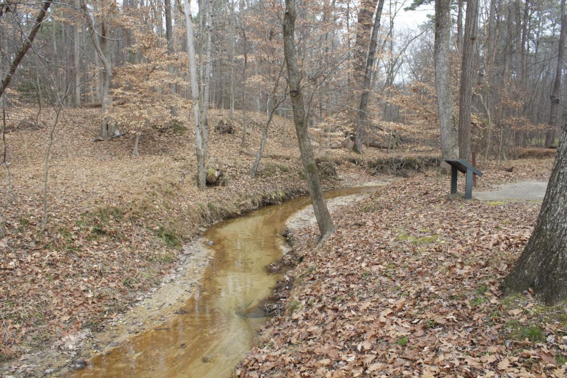 Harrison's Creek