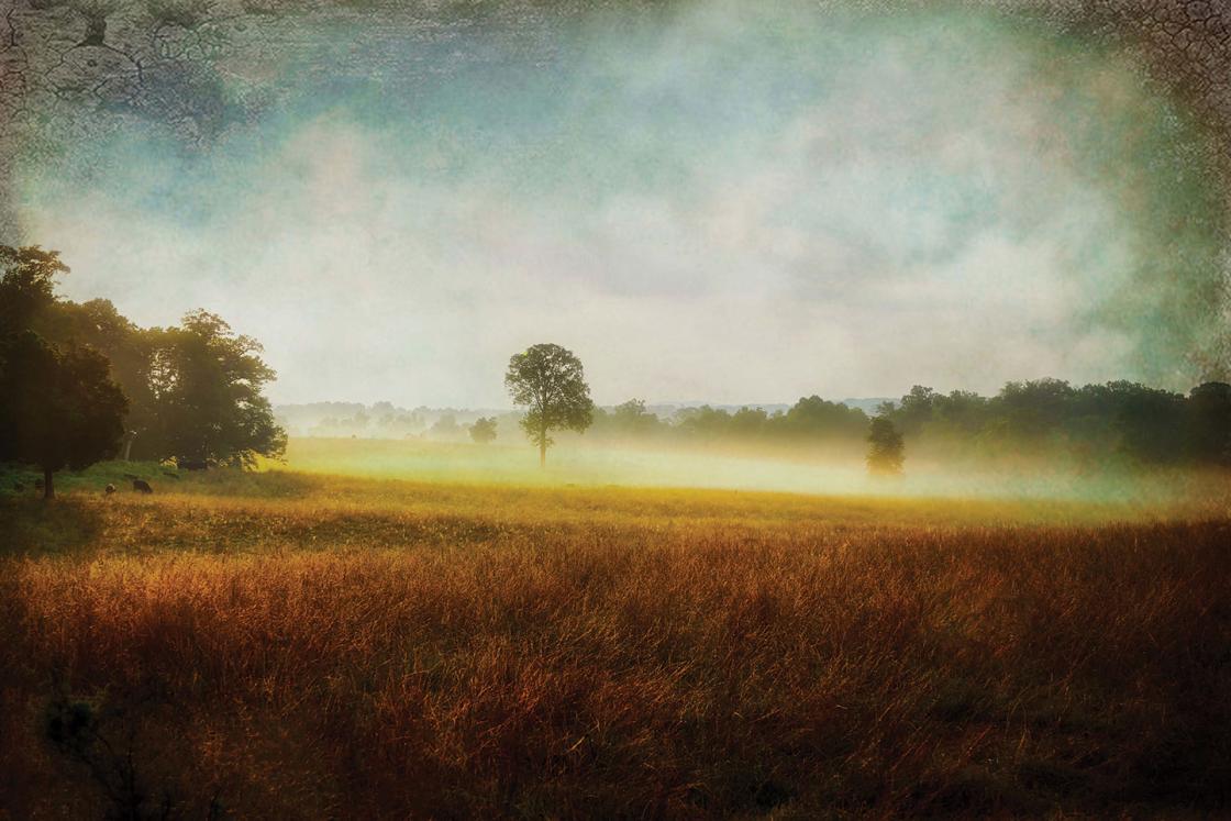 Mill Springs Battlefield Park