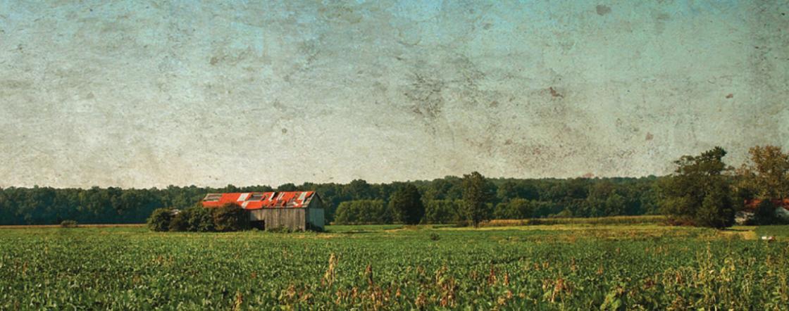 Slaughter Pen Farm Landscape