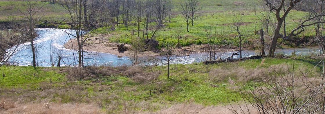 Wilson's Creek