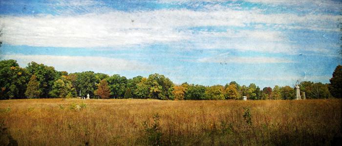 Wheatfield Landscape 700px