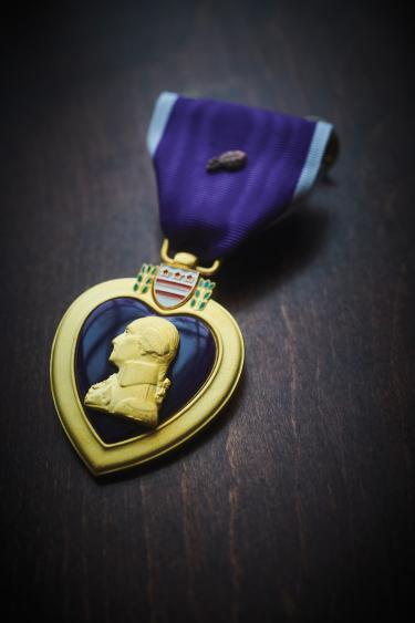 PurpleHeart_JamesSalzano.jpg